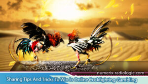 Sharing-Tips-And-Tricks-To-Win-In-Online-Cockfighting-Gambling